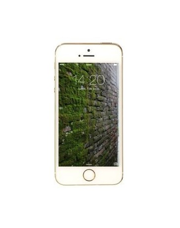Reacondicionado Apple iphone 5s 16 GB-Dorado - Envío Gratuito